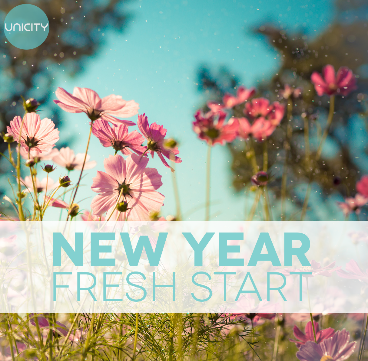 a fresh new start Ecosalon's favorite 40 quotes on fresh starts and new beginnings every man should be born again on the first day of january start with a fresh page.