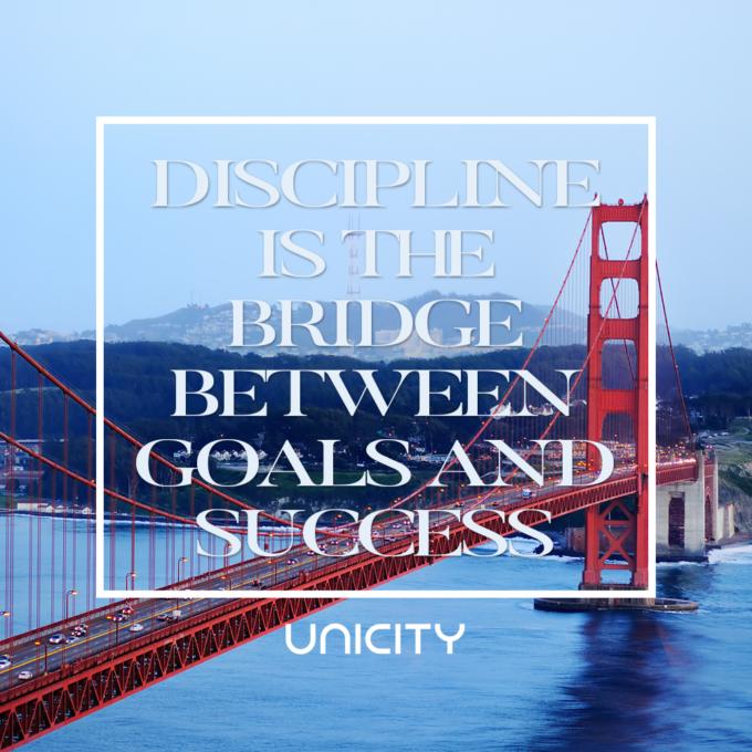 DisciplineBridge